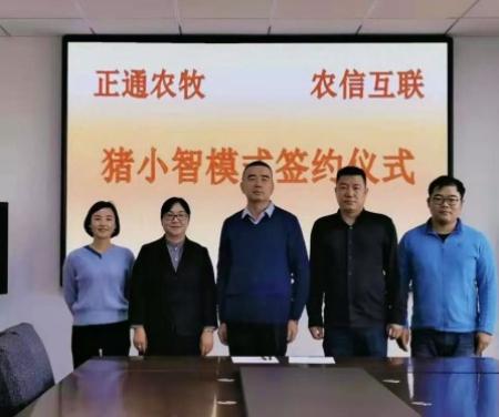 宁夏再添一家智能猪场  农信互联与中卫正通农牧签署智能猪场战略合作协议