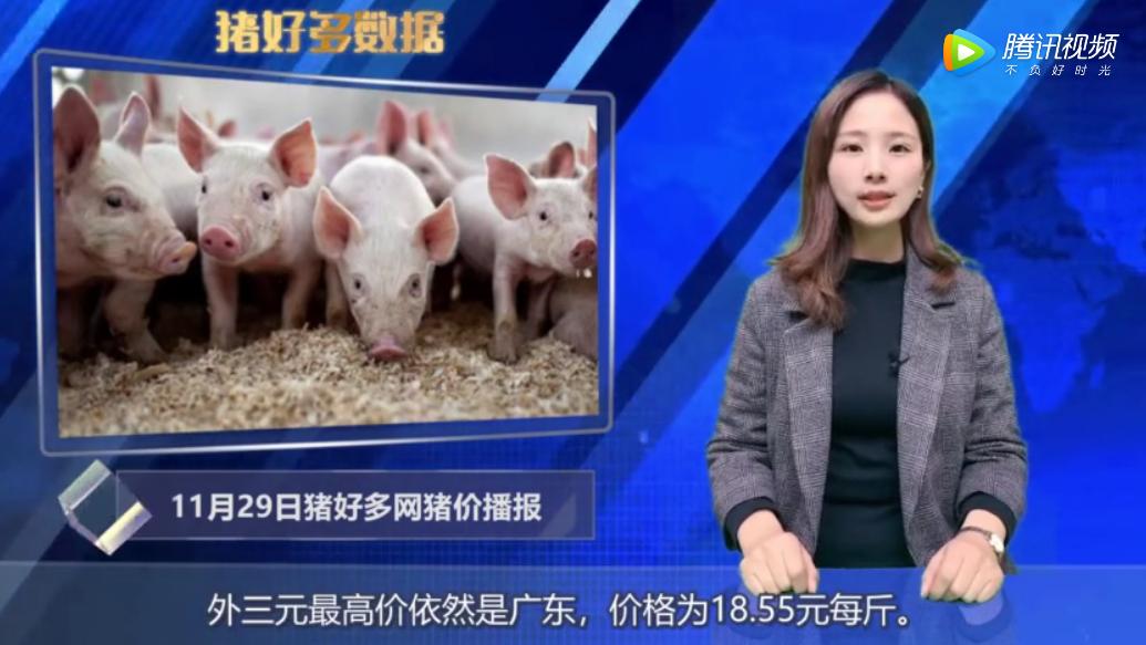 11月29日生猪价格播报:北方跌势较明显,12月的猪价会如何调整?