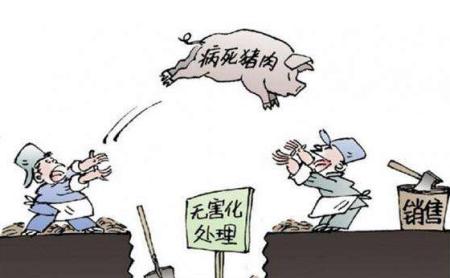 广东南海合谊肉联公司涉嫌死猪出场问题 官方:立即停业整顿
