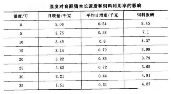 温度对育肥猪的影响