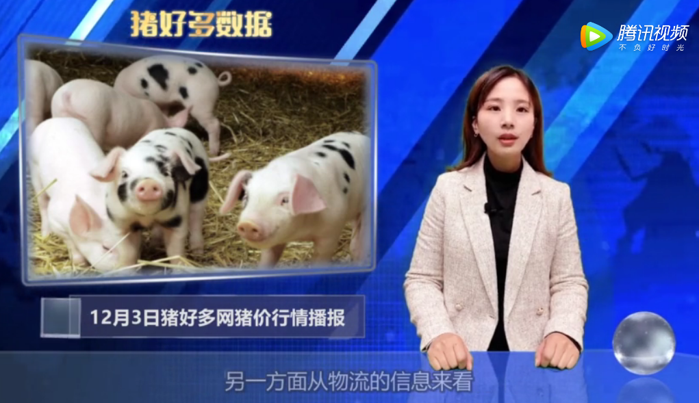"""12月3日生猪价格播报:中南六省""""禁运""""起作用?猪价大幅上涨!"""