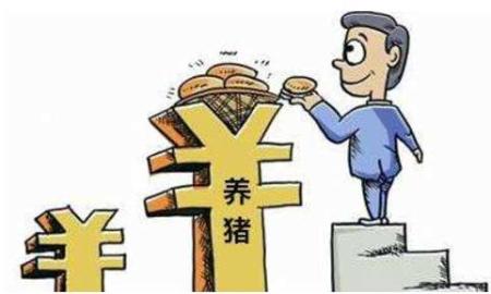 湖南省:2019-2020年主要养猪扶持政策来了!