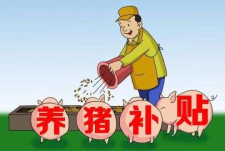 广西恢复生猪生产政策解读:新建扩建养猪场最高可获补助500万元