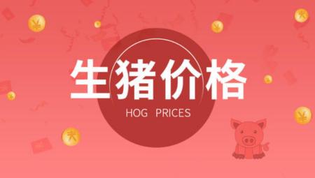 12月6日全国生猪价格,21省上涨,屠企压价宣告失败?