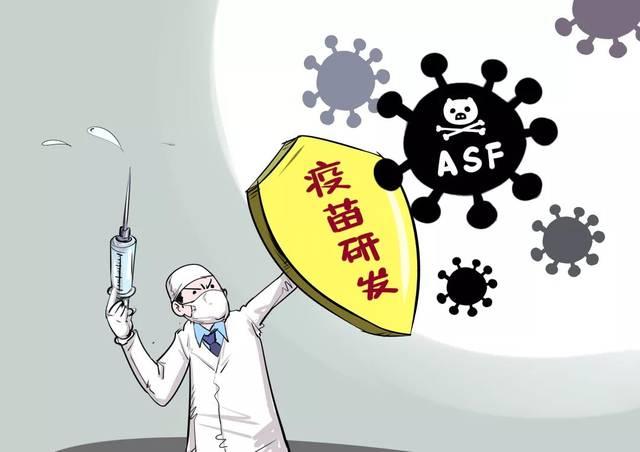 最新!美国宣称研发出非洲猪瘟疫苗,保护率100%