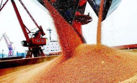 12月9日全国豆粕价格行情表,黔渝滇地区豆粕价格涨幅较大