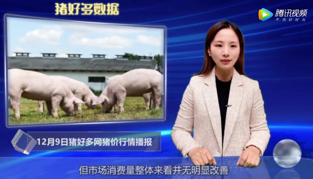 12月9日养猪行情分析:专家建议重视散养户,积极帮助散养户恢复生猪生产