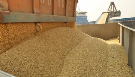 12月10日全国豆粕价格行情表,豆粕价格阶段性承压重心上移