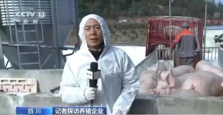 """助力猪业复产,""""川军""""斗志昂扬!"""