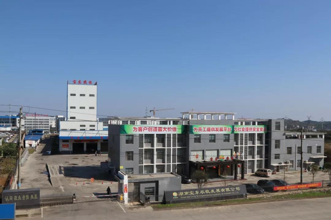 湖南宝东农牧与农信互联签署猪联网集团版+代养版合作协议