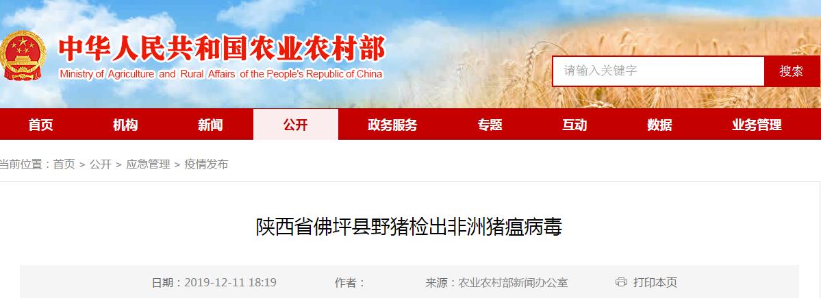 最新消息 陕西省佛坪县野猪检出非洲猪瘟病毒