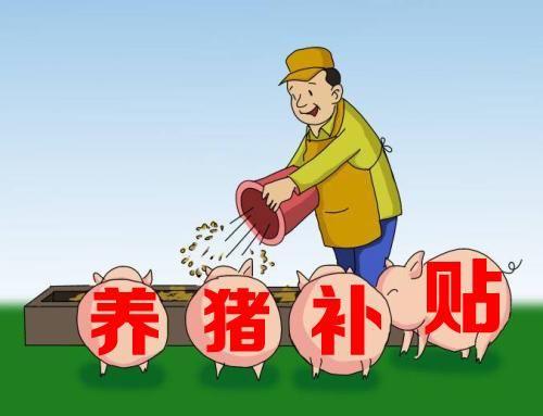 贵阳:每头种猪补800,家庭农场补10万!