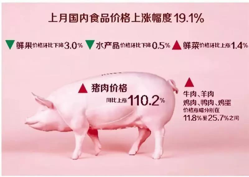 猪肉:仍是CPI上涨最大推手!