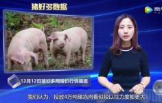 """12月12日猪价行情:猪肉现""""零售指导价"""",猪价还能涨吗?"""