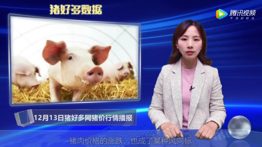 12月13日猪价行情播报:储备肉即将投放,消费不如预期,猪价整体下跌