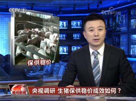 全国猪肉价格连续回落 央视记者深入调研生猪养殖现状