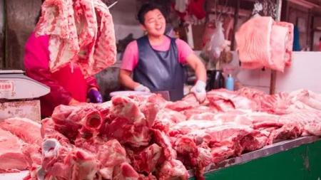 广东省生猪和能繁母猪存栏止跌回升!