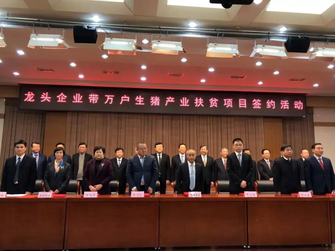 扬翔与广西两市签约!龙头企业带万户生猪产业扶贫项目启动