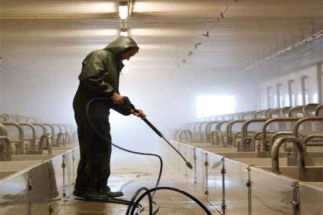 一个复产2个月成功配种猪场,复产计划是这样落地的