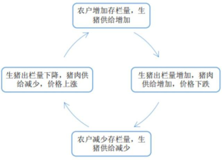 生猪养殖蛛网模型