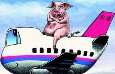 冻猪肉进口