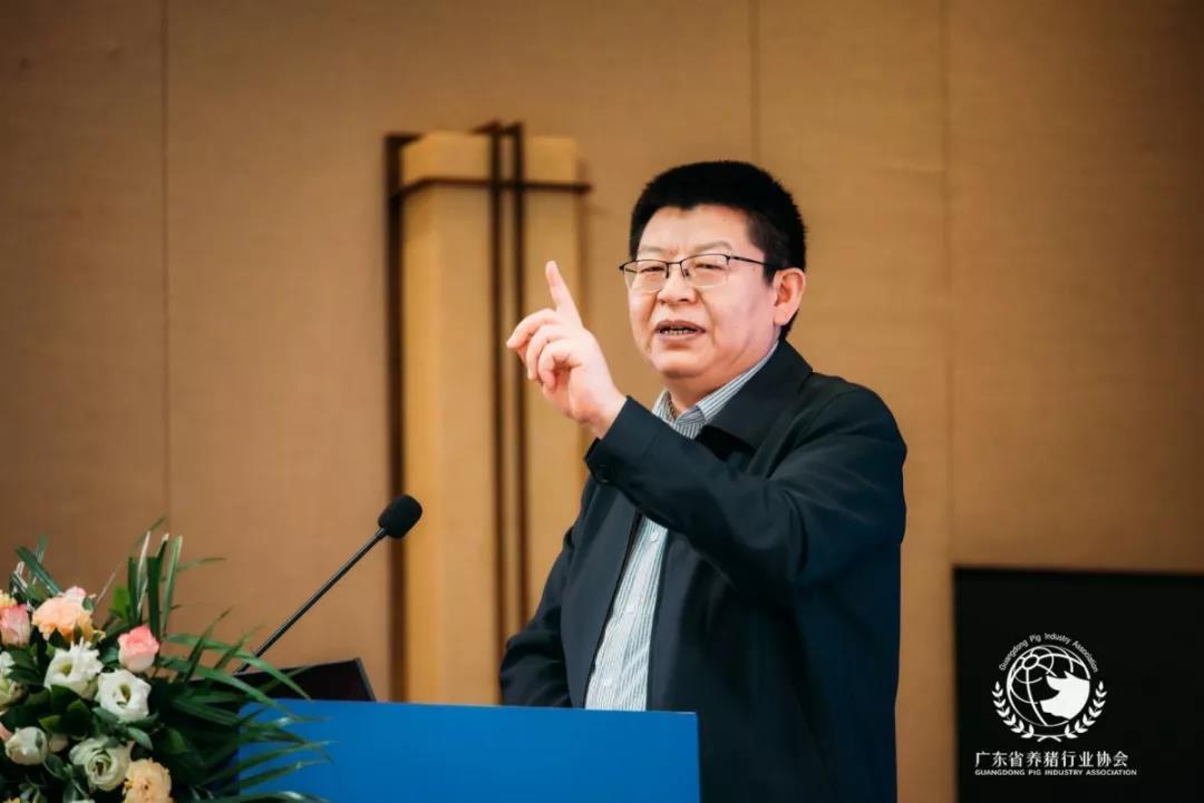 辛国昌释疑:生猪存栏数据怎么来的?扶持政策能保持稳定吗?