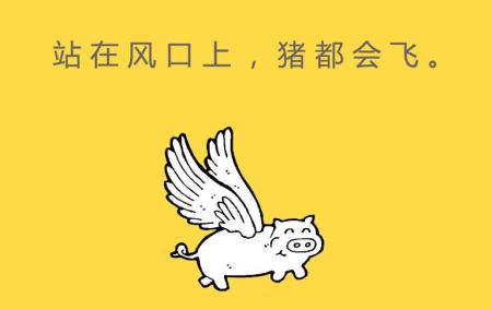 站在风口上的猪,根本停不下来
