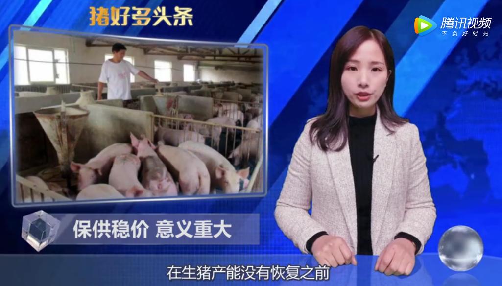今日猪价普涨,储备肉投放、关税下调,春节前猪价能涨到20元?