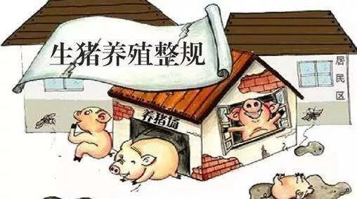 广东加快推进生猪家禽产业转型升级