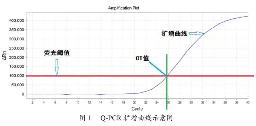 Q-PCR的CT值显示异常