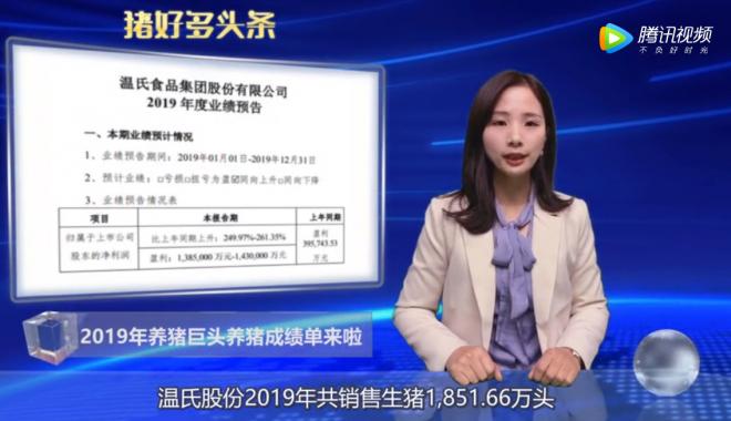 2019年九大养猪巨头成绩单,温氏股份领跑,合计生猪出栏4407万头