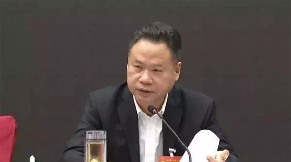 胡明刚代表:走好生猪绿色发展之路,实现生猪稳价保供!