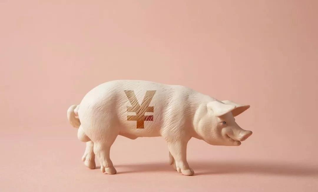 """生猪疫病对养猪业健康发展至关重要,这道""""梗""""必须去除!"""