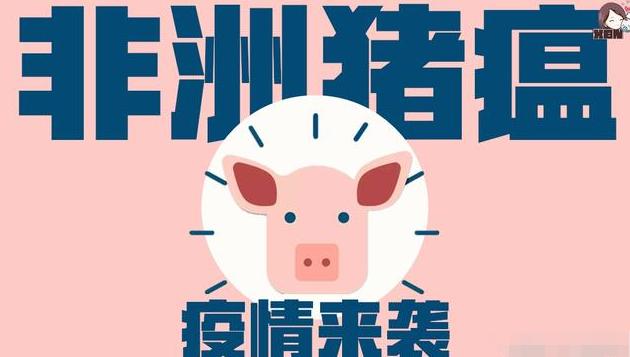 中国农历新年或引起非洲猪瘟病毒传播