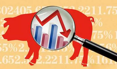 1月20日全国生猪价格外三元报价表,目前北猪南运接近尾声,上涨势头明显减弱!成体成下跌趋势!