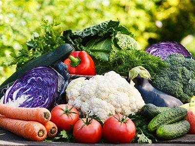 农业农村部办公厅印发紧急通知 部署应对疫情抓好蔬菜生产保障供给