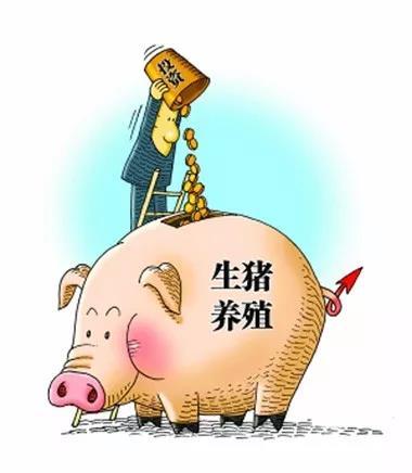 """""""新冠""""疫情延长""""猪周期""""?!"""