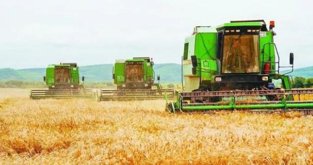 保障重要农产品有效供给,持续抓好农业稳产保供和农民增收