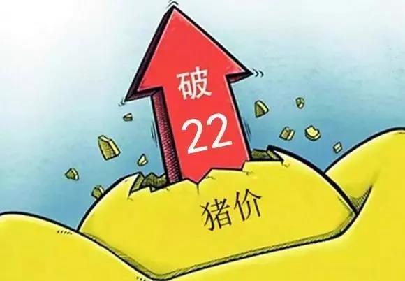 猪价逆势大涨,三省再破22,今年能超过去年吗?看完明白了