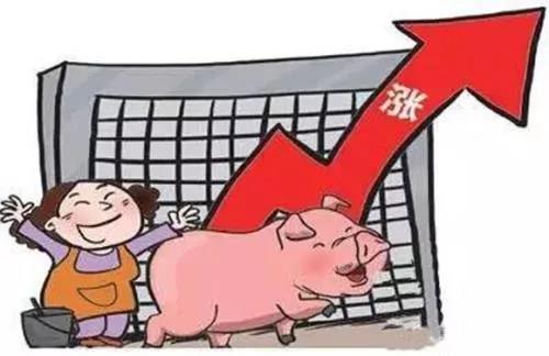 """大涨夹小跌,猪价刚起,养殖户又遇""""新""""难题,咋解决?"""