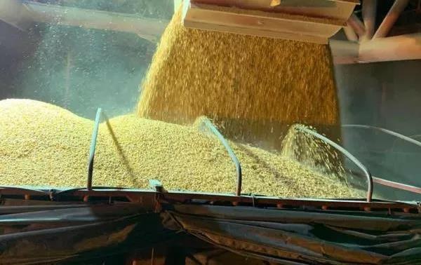 农业农村部与交通运输部建立需求对接机制 首批250吨饲料原料顺利从荆州到达宜城