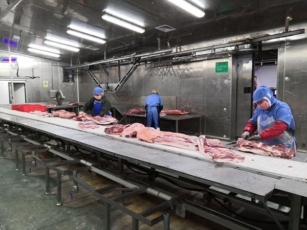 助力猪肉产品稳产保供 崇州这家企业日供生猪千余头