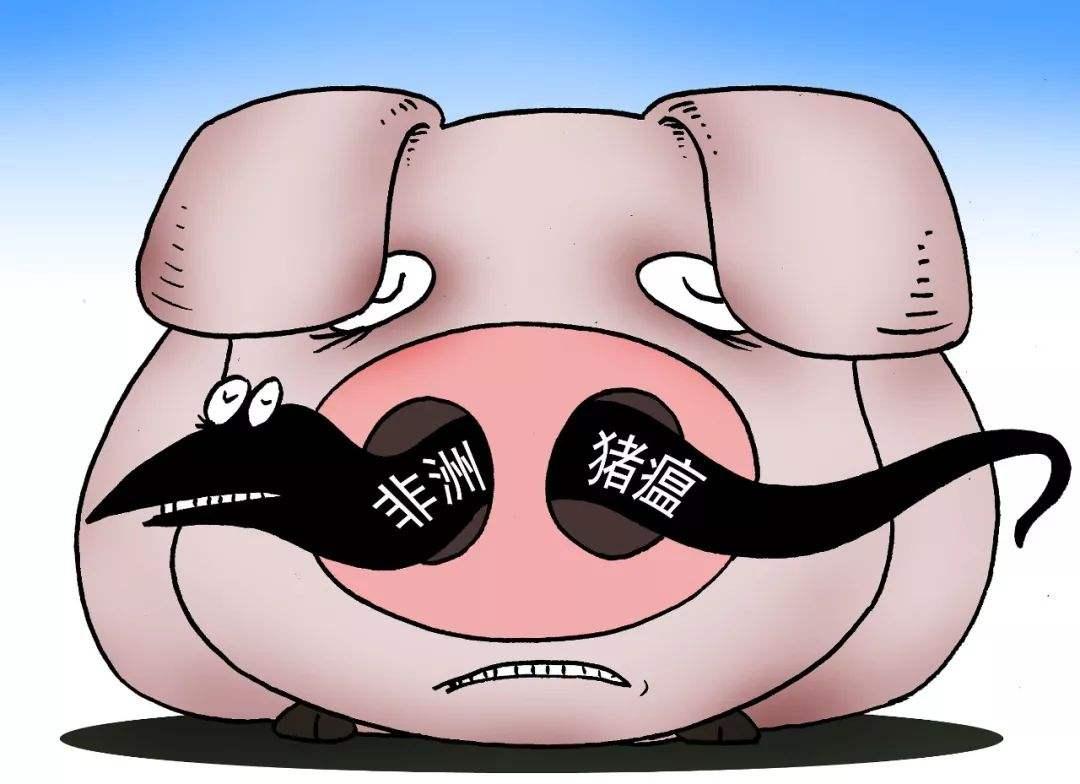 """遂宁男子网上发布""""非洲猪瘟""""谣言 被警方拘留"""