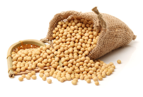市场:油脂大跌,豆粕走强!豆粕走强是否存在基本面基础?
