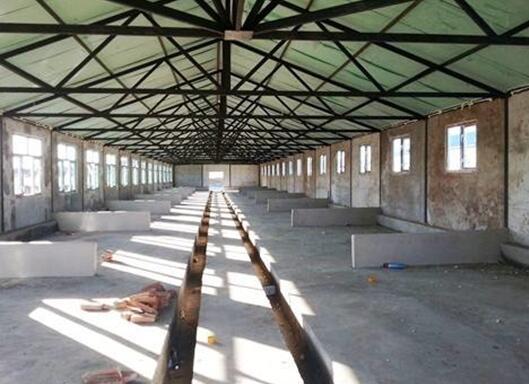 建设猪场需要哪几方面的设计?