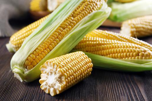 疫情影响玉米购销节奏 关注反向套利机会