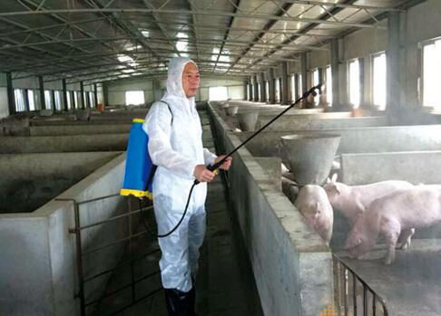 合理加强猪场防控,猪场消毒的几大误区!