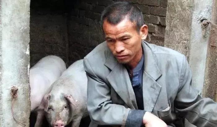 疫情下,听来自养猪一线的疾呼!