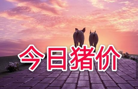 2月24日全国生猪价格外三元报价表,今日全国生猪均价呈震荡下跌态势!