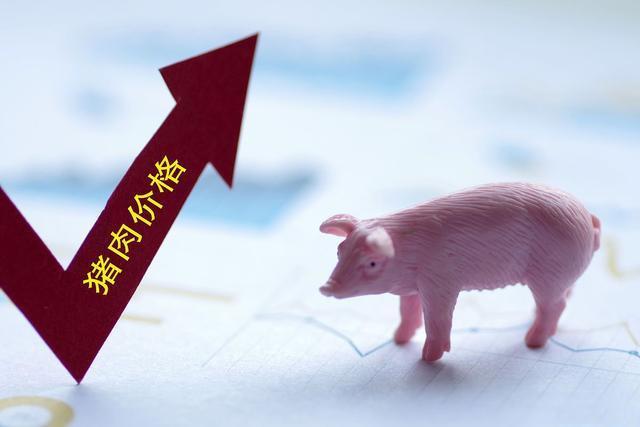 3月5日生猪价格,生猪均价持续上涨,新一轮上涨潮或即将启动!